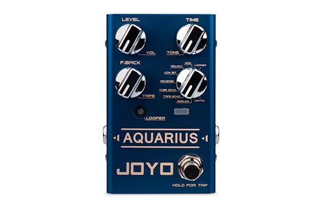 R-07 Aquarius (Delay/Looper) - Joyo