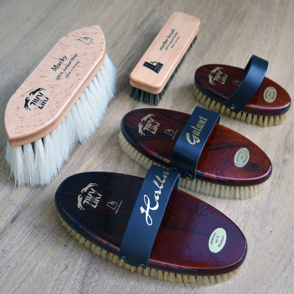 ZIKY horse grooming brushes by Leistner