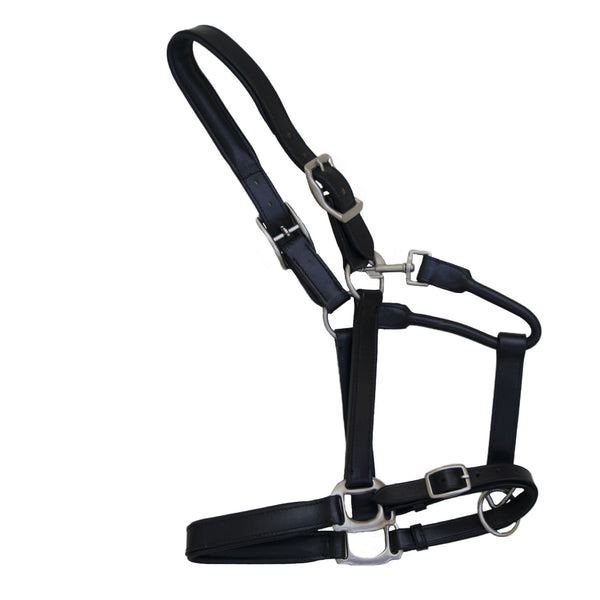 Padded leather halter