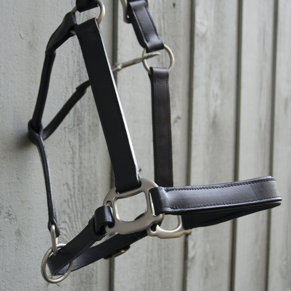 Padded black leather halter