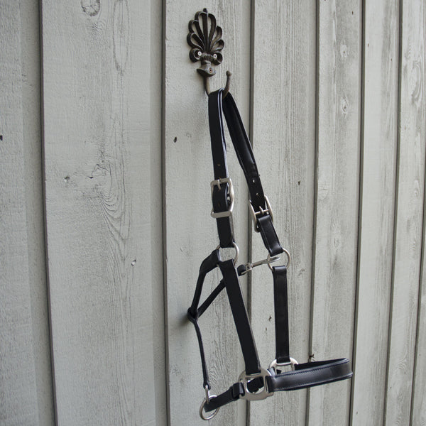 Black leather halter with stainless hardware