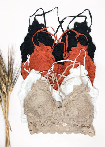 Padded Lace Bralette - Black, Rust, Taupe & White