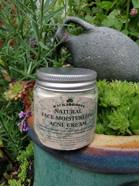 Natural Organic Acne Face Cream