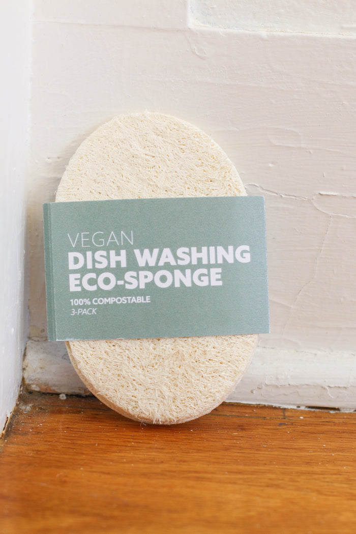 Vegan Biodegradable Dishwashing Sponge Set