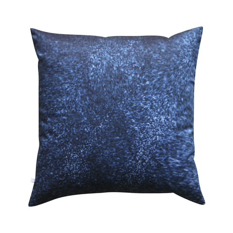 Whatever The Weather Pillow