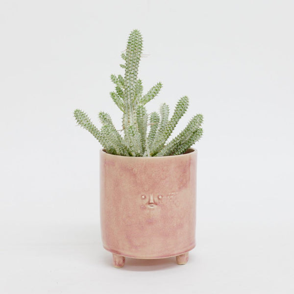 Pink Planter with Mini Face by Rami Kim