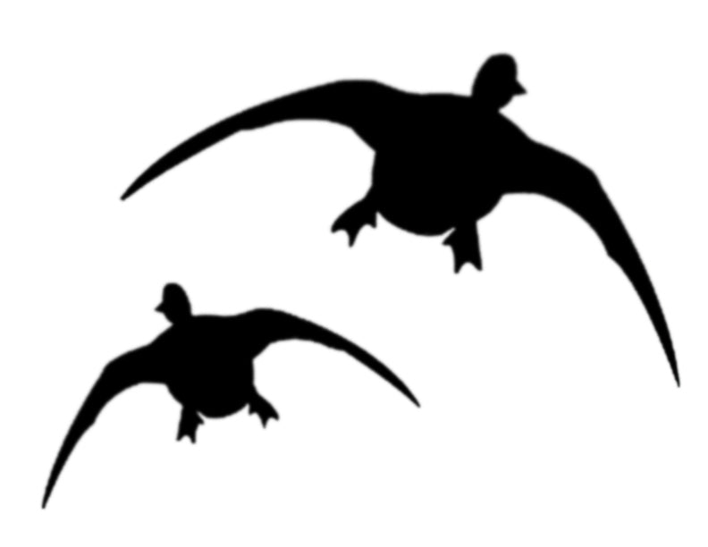 "Duck Ducks Flying 11"" x 8.5"" Custom Stencil FAST FREE SHIPPING"