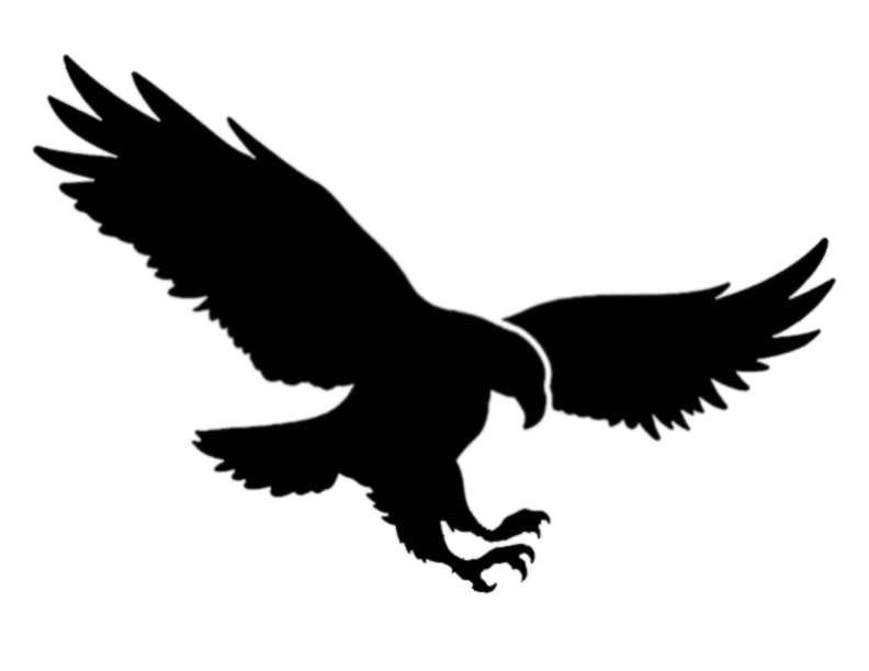American Eagle Flying - Stencil