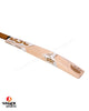 DSC Eureka Glint English Willow Cricket Bat - Small Adult