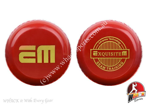 EM Seam Training Cricket Ball