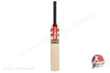 Gray Nicolls Kronus 2000 English Willow Cricket Bat - Harrow/Small Men