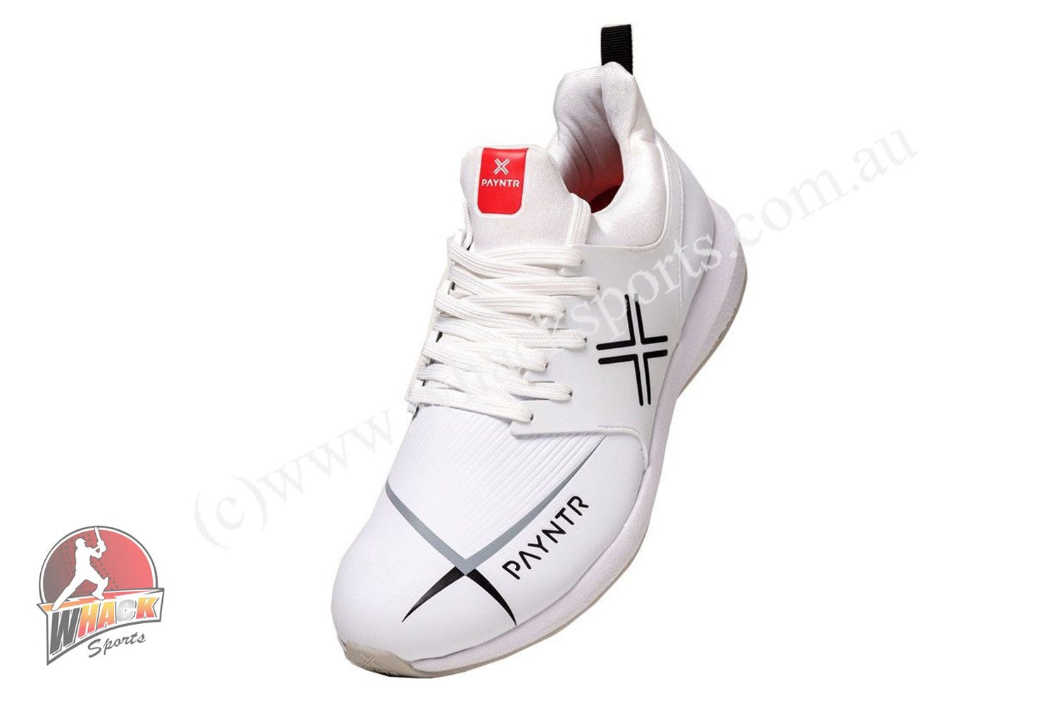 Payntr MK3 Cricket Shoes Steel Spikes