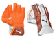 Puma Evo 2 Cricket Keeping Gloves - Men