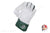 SG Savage Cricket Wicket Keeping Gloves - Men