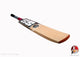 TON Gutsy Kashmir Willow Cricket Bat-Junior