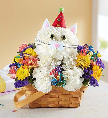 purrfect-party-cat_gofruitHappy Birthday