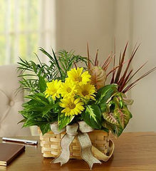with-love-dish-garden-fresh-cut-flowers_gofruitSmall