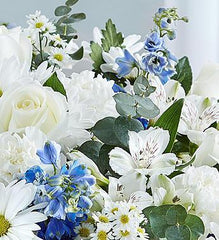 cherished-memories-blue-and-white_gofruit