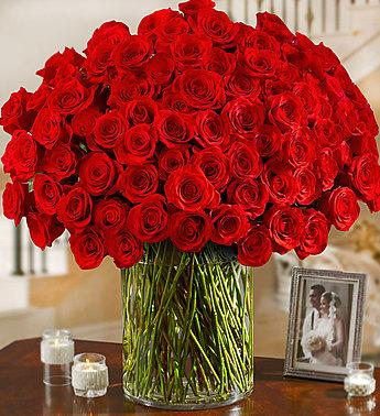 100-premium-long-stem-red-roses_gofruit