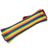 Rainbow Firehose (limited edition)