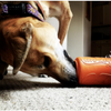 Strong, natural, durable chew and treat dispensing toys!