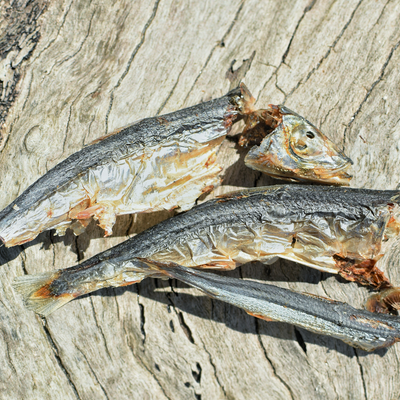 Catch Of The Day - Small Oily Fish