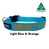 Light Blue and Orange embroidered custom ID Collar Australian Made