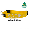 Yellow and White embroidered custom ID Collar Australian Made