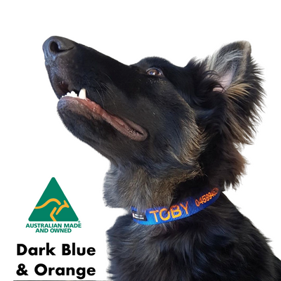Dark Blue and Orange embroidered custom ID Collar Australian Made