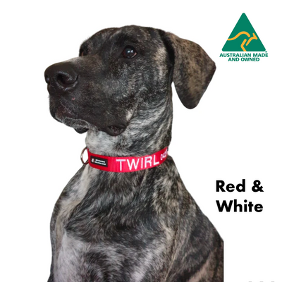 Red with White embroidered custom ID Collar Australian Made