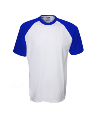CLEARANCE Raglan Tee in Royal