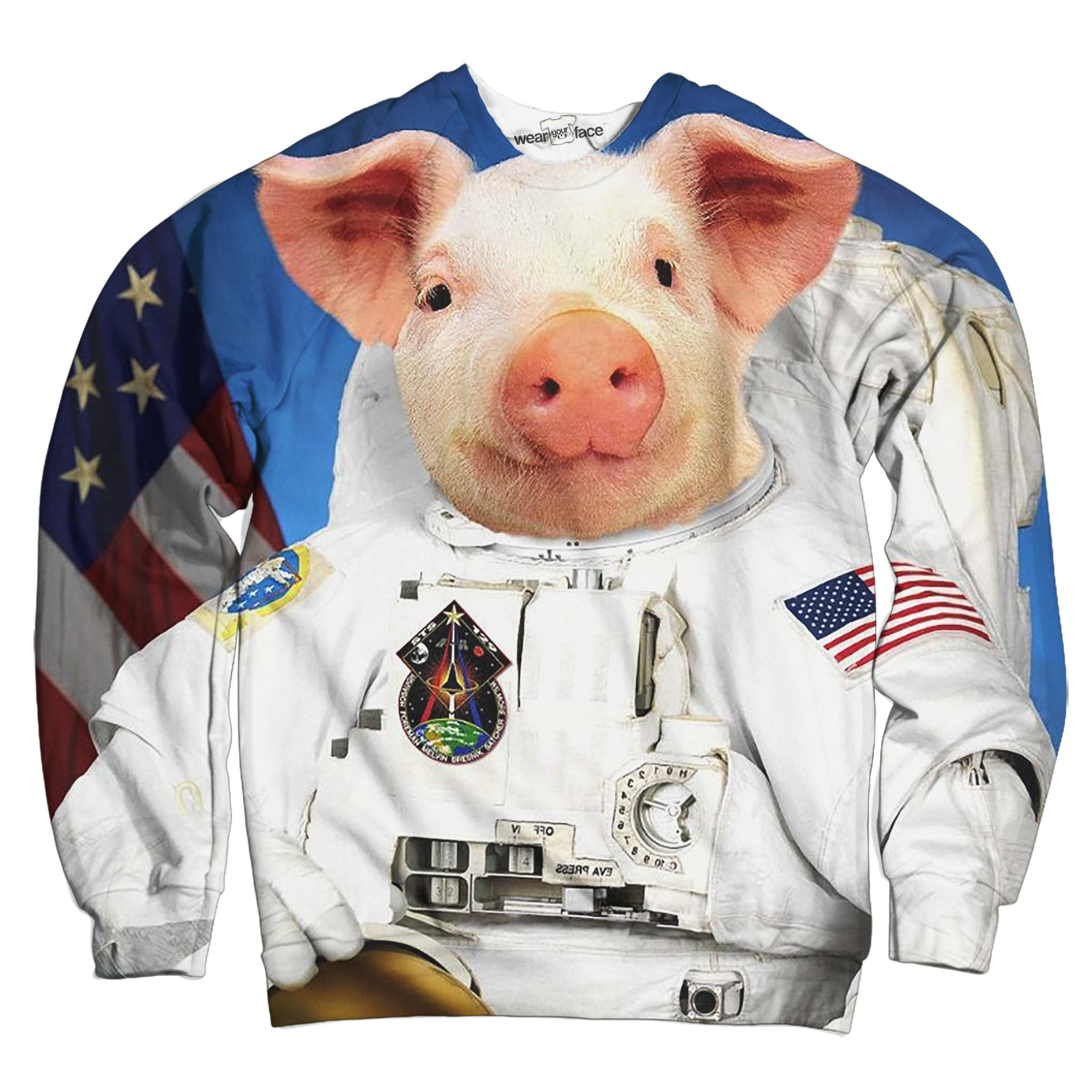 Space Pig Sweatshirt