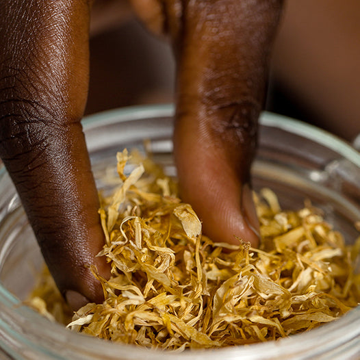 Ingredient Story: Calendula