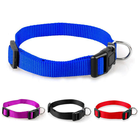 Snap-N-Go Collar Nylon Collar S/M/L/XL