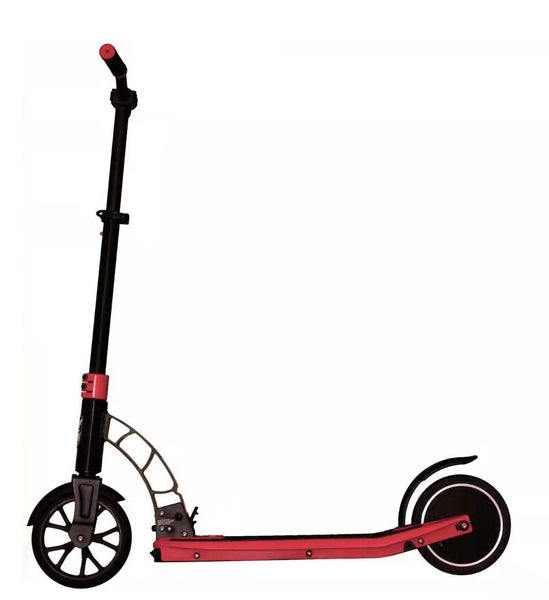 Fiik Urban Electric Scooter with 22ah /36v Lithium Battery - Australia