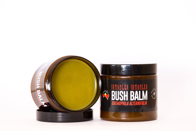 Bush Balm made with irmangka irmangka for relief of arthritis, muscle pain and joint inflammation. May also be used as a chest rub for cold & flu.