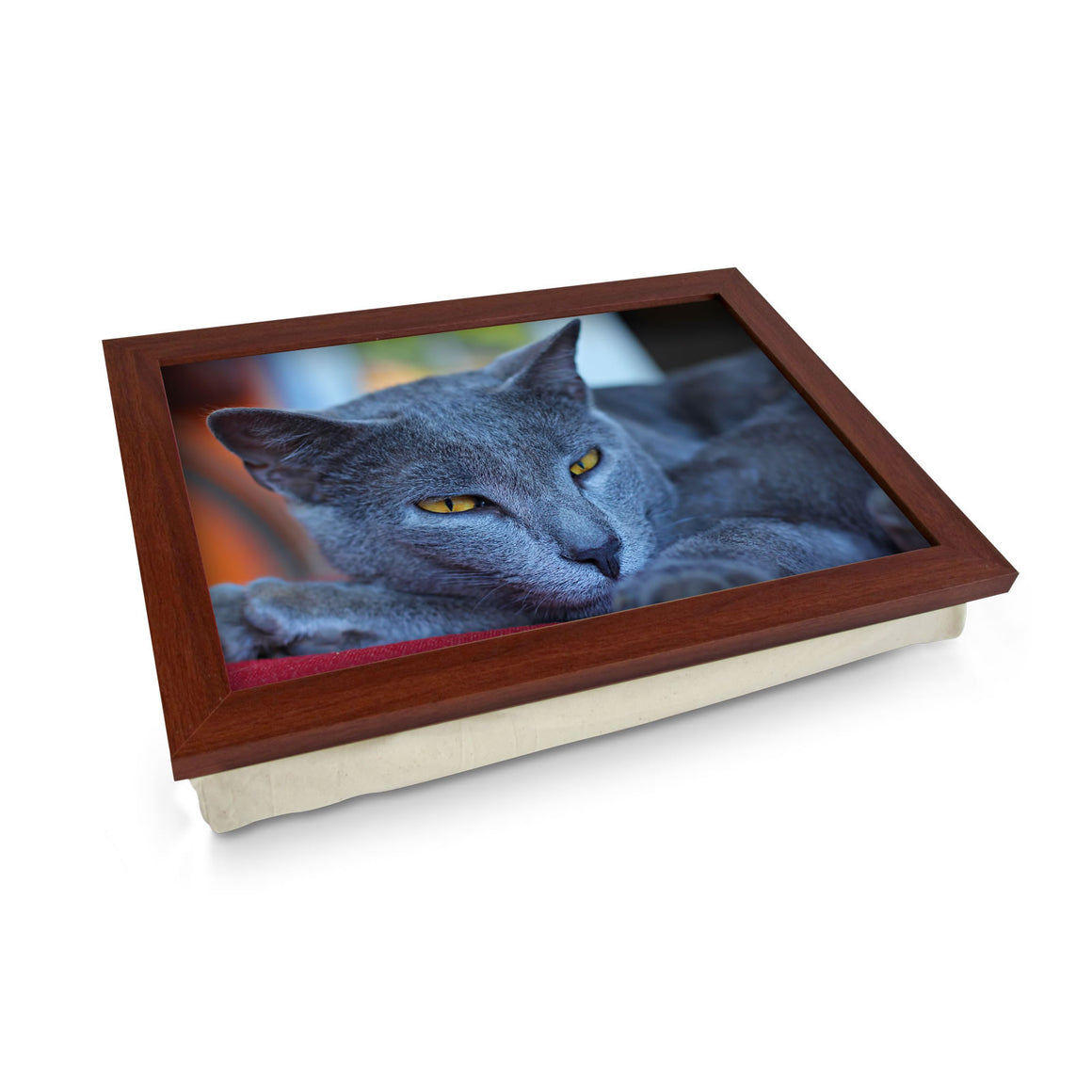 Chartreux Cat bean bag tray