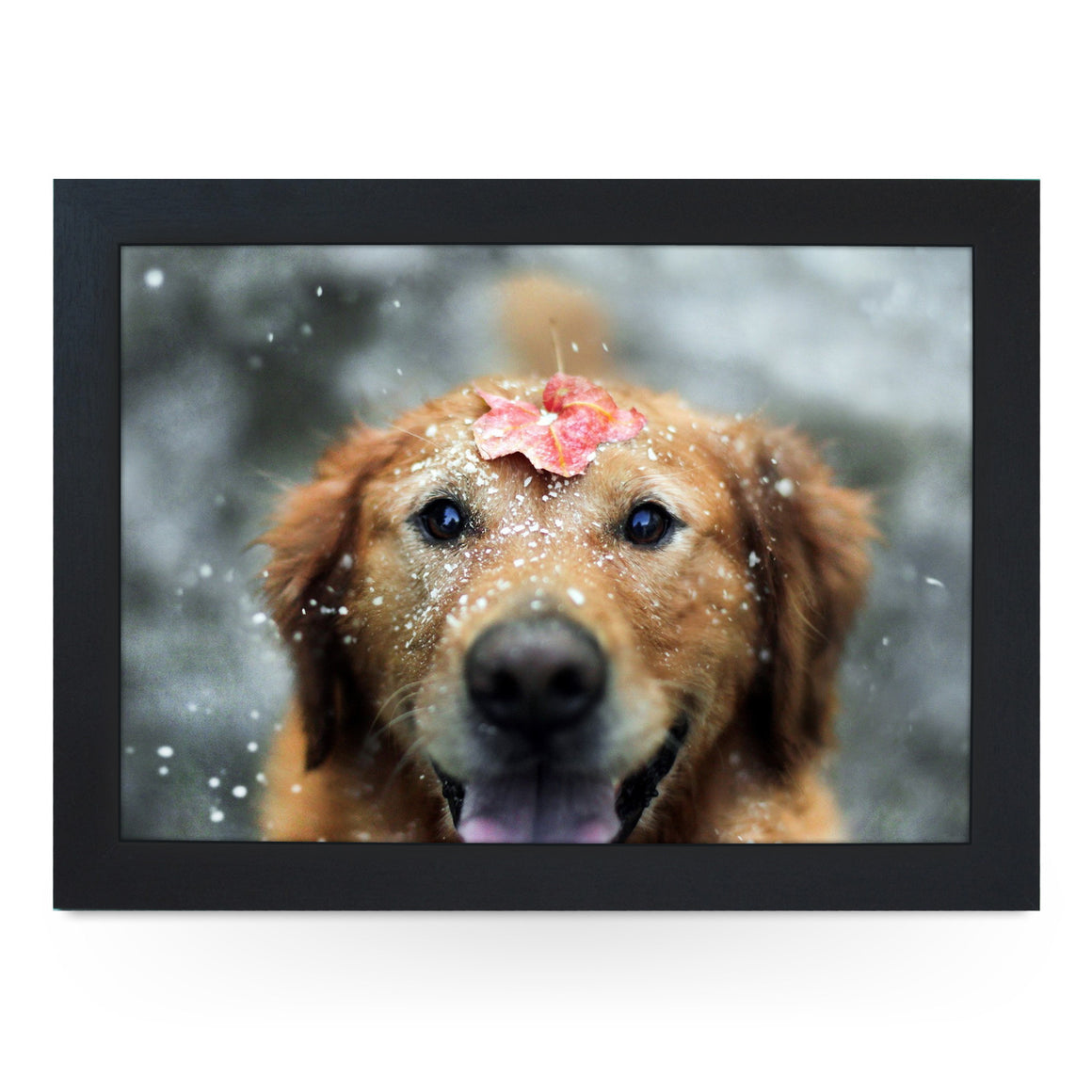 Dog in Snow Lap Tray - L0025