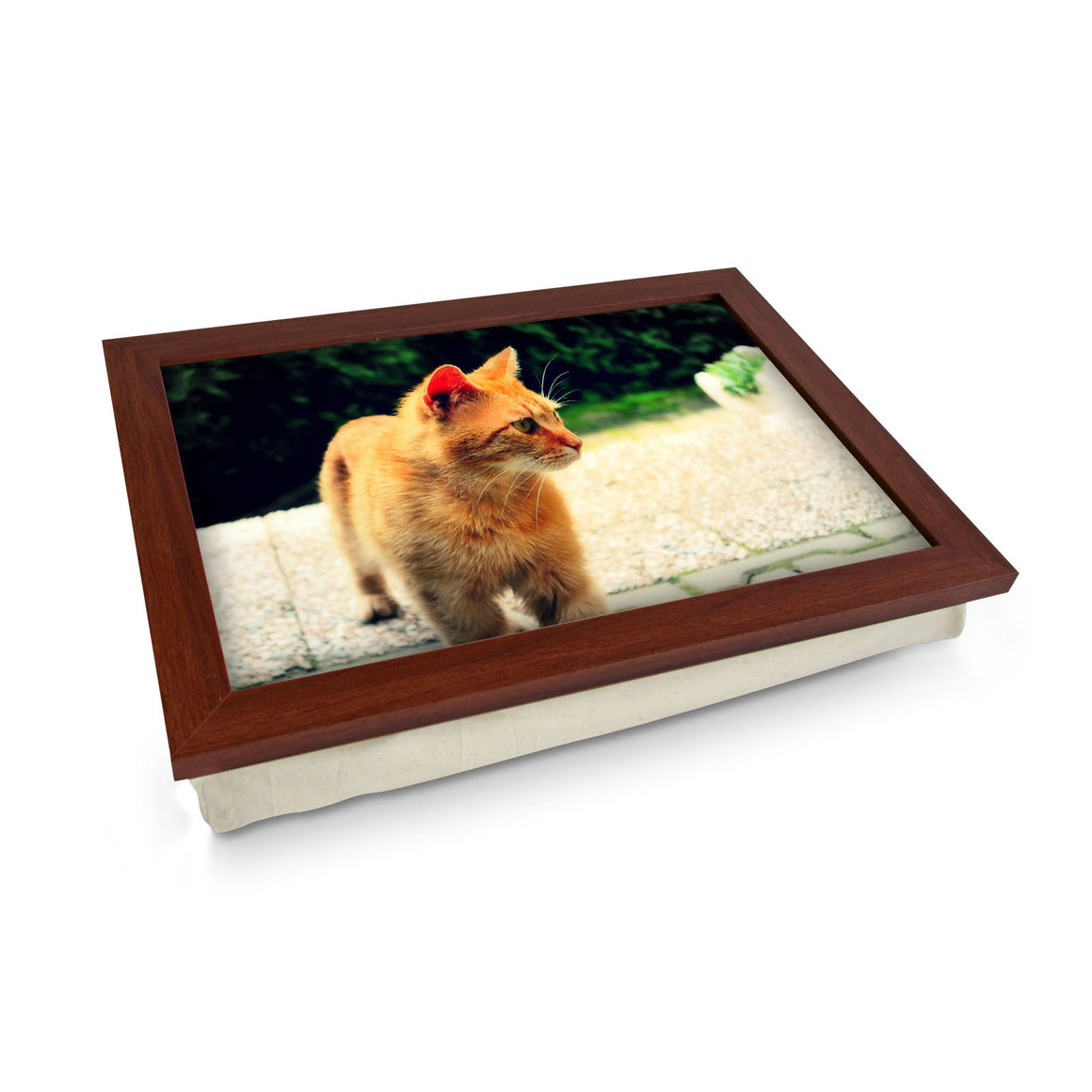 Ginger Cat Cushioned lap tray