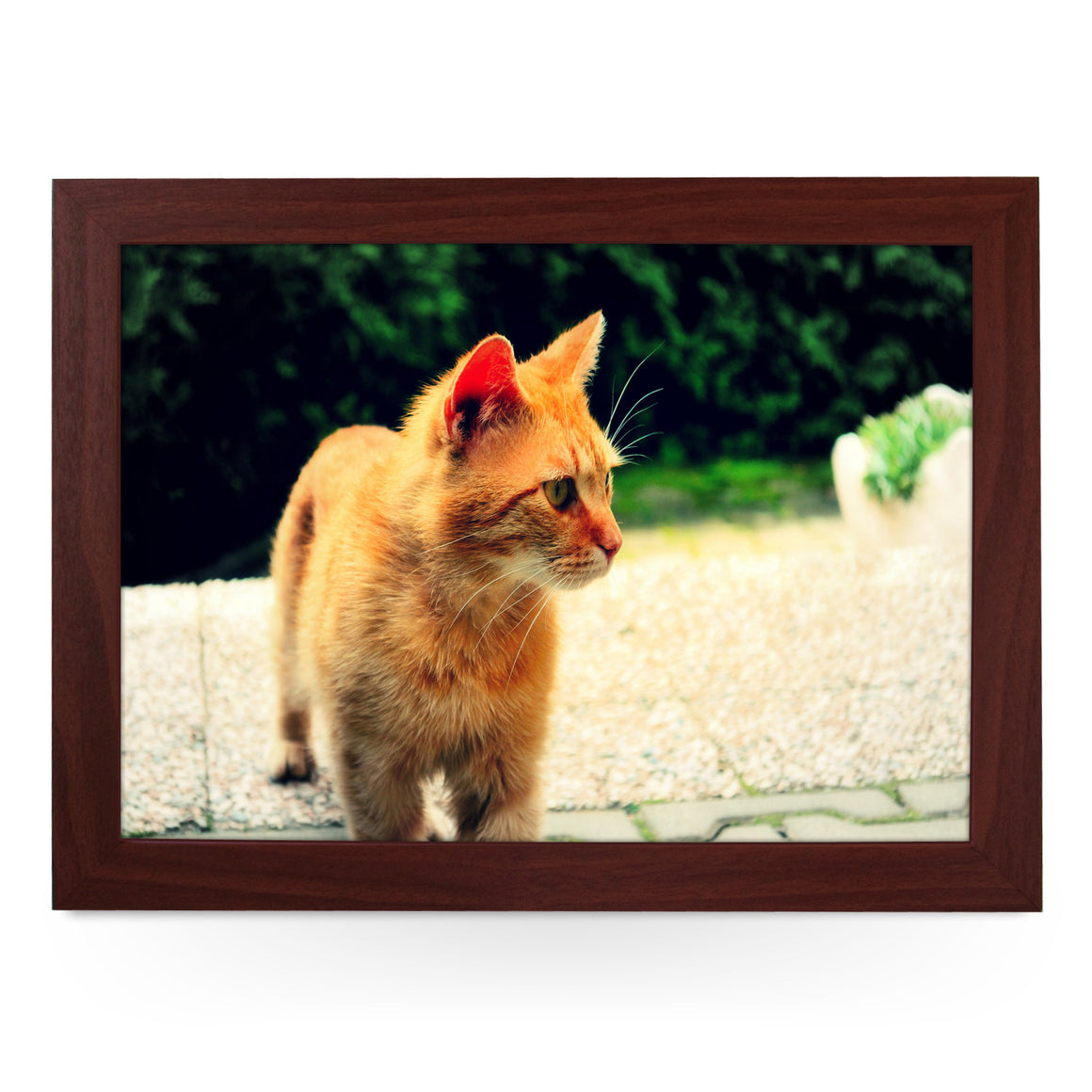 Ginger Cat Lap Tray - L0028
