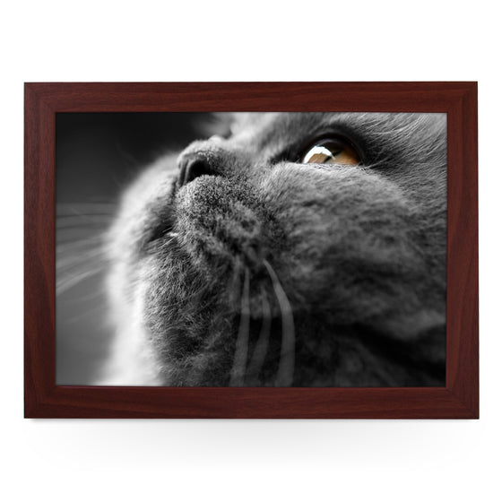 Grey Cat Close Up Lap Tray - L0029