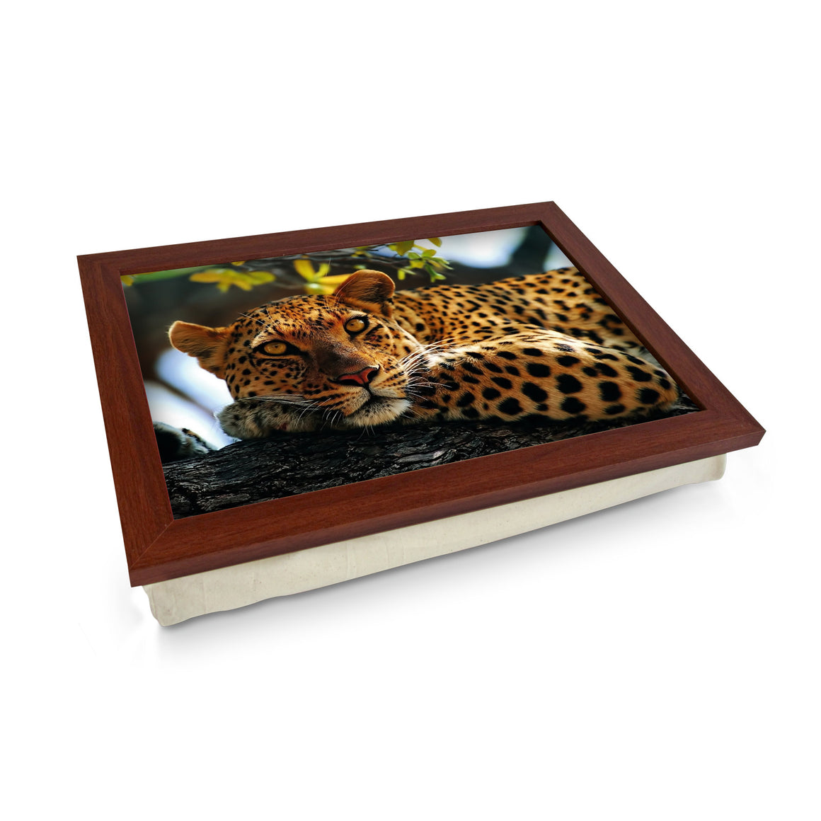 Leopard In Tree - L0047