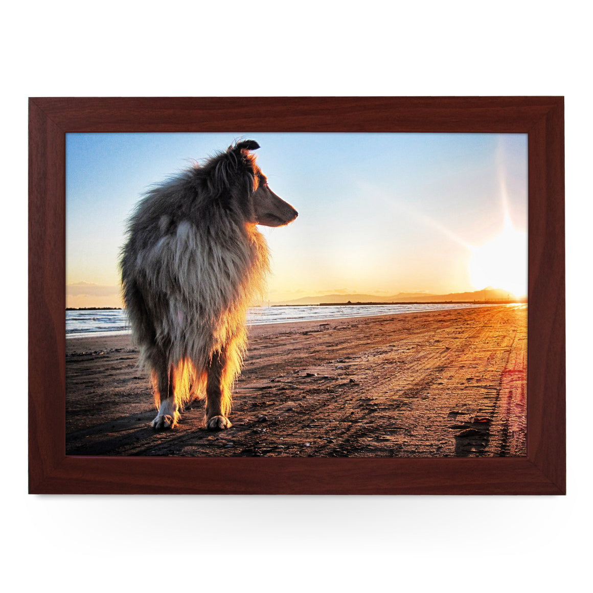 Long Haired Collie Dog Lap Tray - L0048