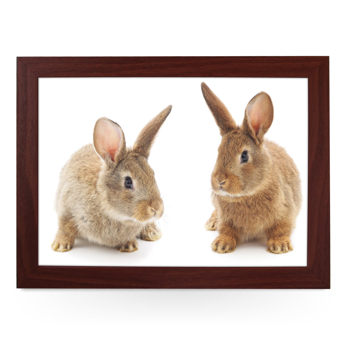 Two Cute Bunnies Lap Tray - L0077