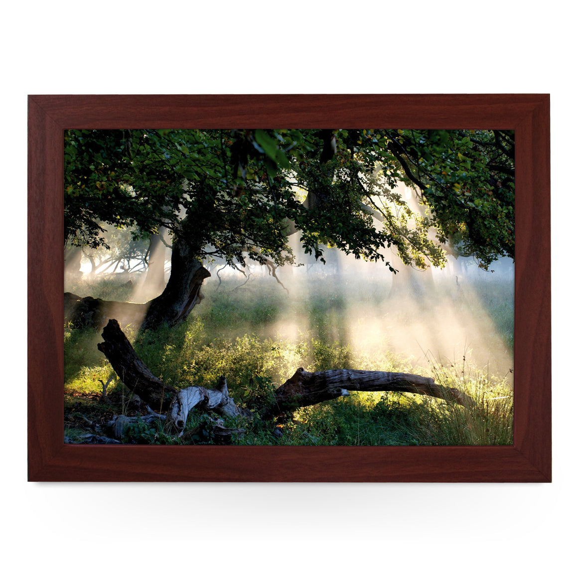 Sunlight Through A Tree Lap Tray - L0087