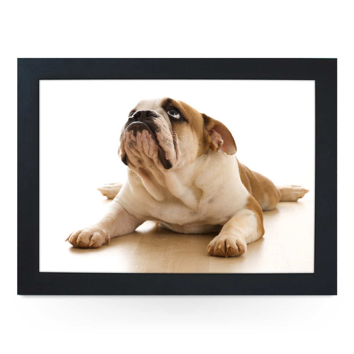 British Bull Dog Lap Tray - L0097