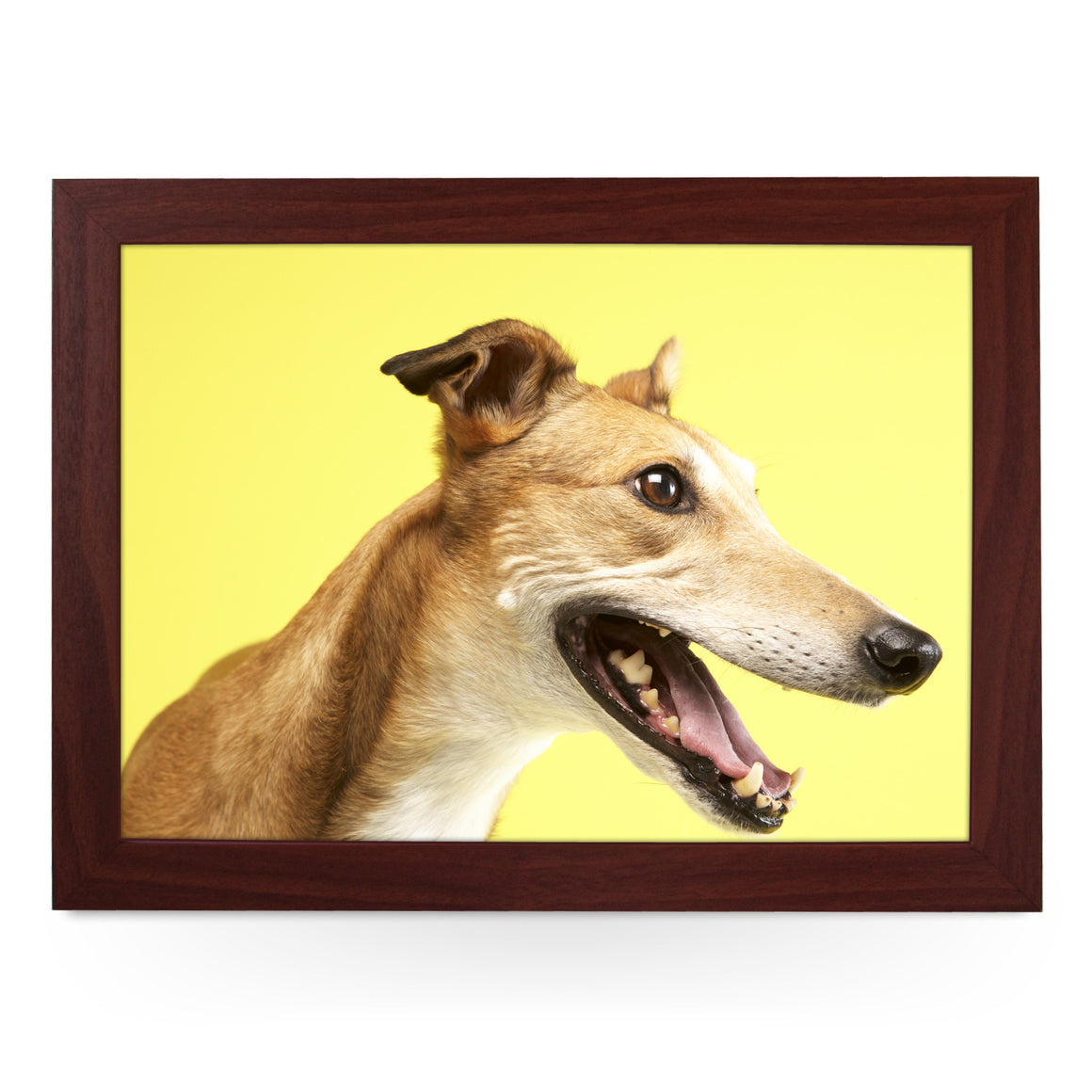 Greyhound Lap Tray - L0098