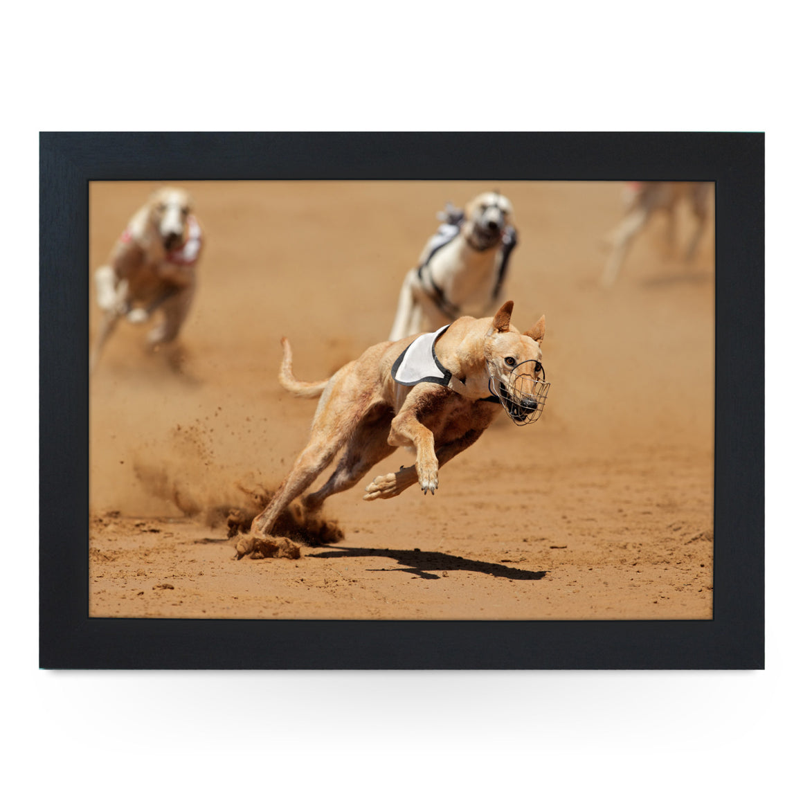 Greyhound Dog Racing Lap Tray - L0100