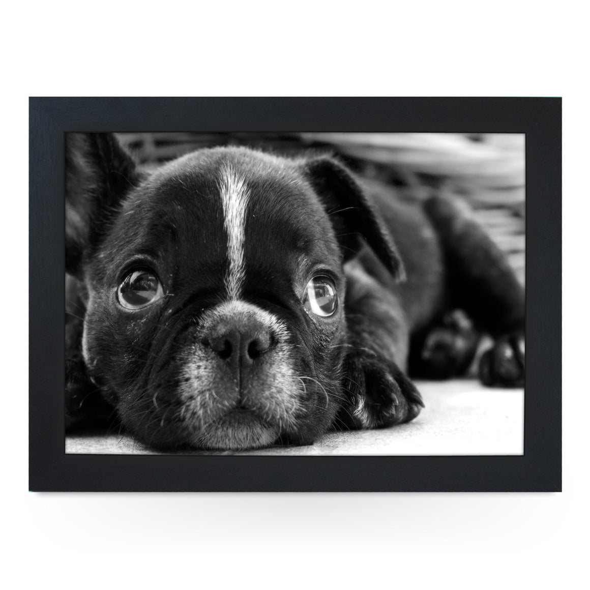French Bulldog Puppy Lap Tray - L0138