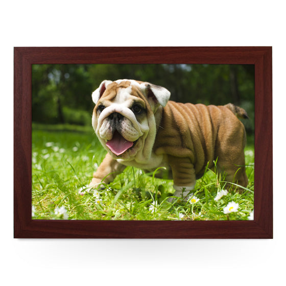 English Bulldog Puppy Lap Tray - L0142